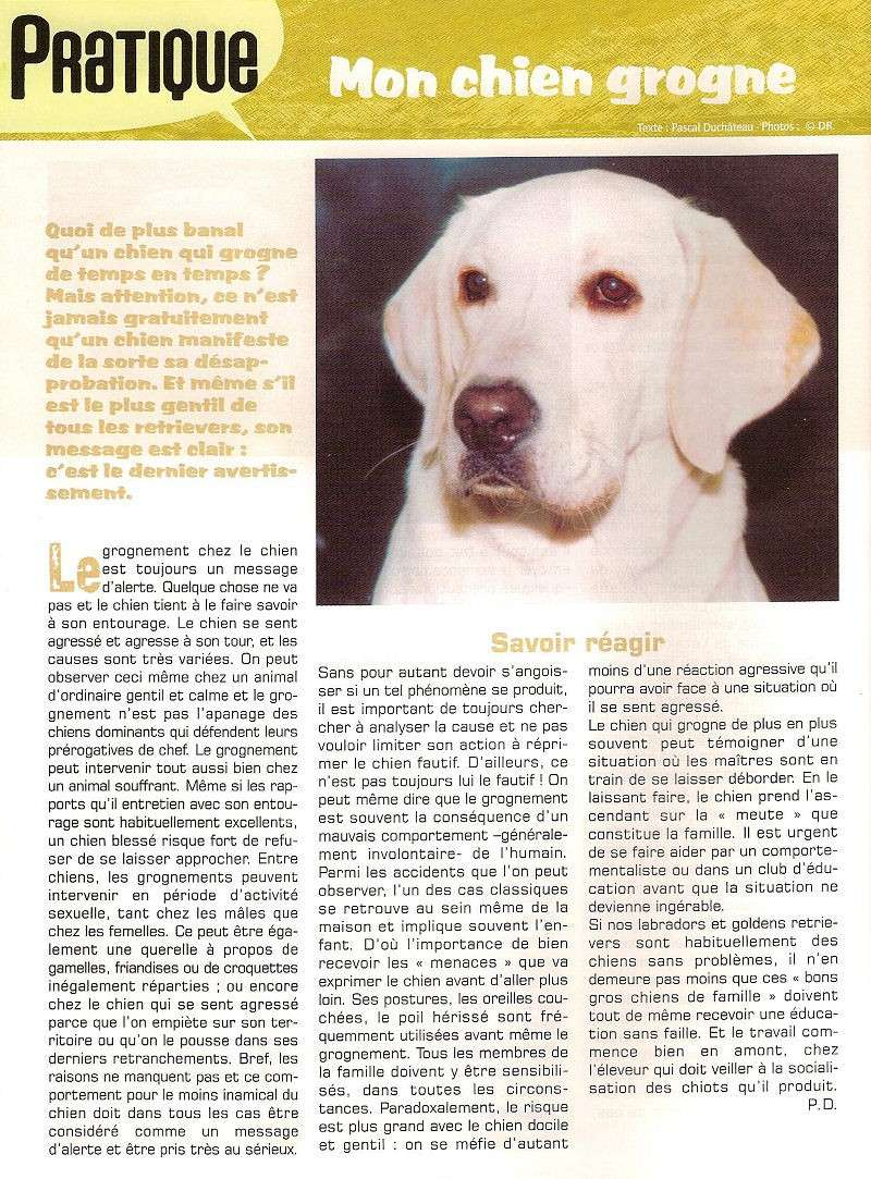 Education ,extraits de lab mag en 2004 8a-pra10
