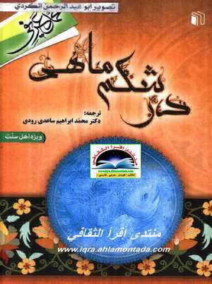 در شکم ماهی - محمد عریفی 16