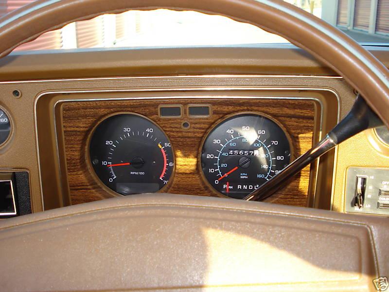 Speedometer & Tach 76_spr10
