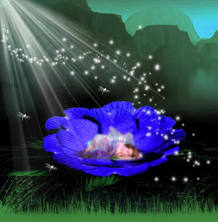 bonzour bonne zournée et bonne nuit notre ti nid za nous - Page 37 Displa10