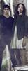 Teen Wolf RPG {confirmación Elite} 40x10010