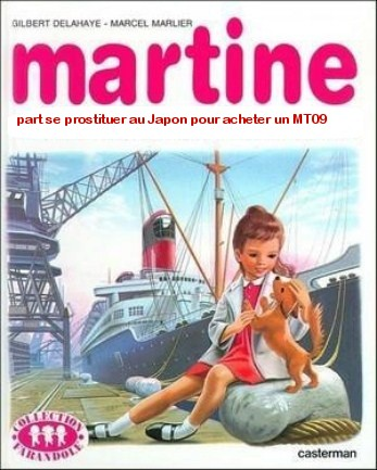 martine achète un MT 09 - Page 2 Ca22e510