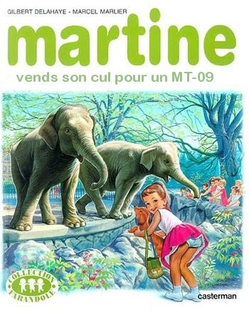martine achète un MT 09 Salope10