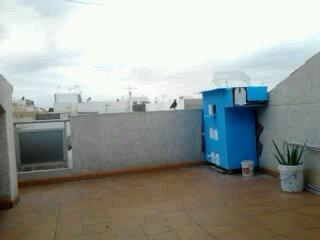 BUCHON DE LA TIERRA (tenerife) - Página 2 13724610
