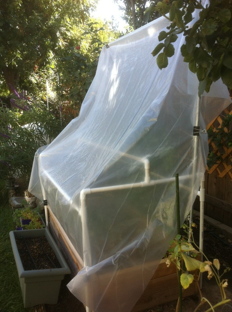 Central California: Just planted my winter garden starts yesterday Frames18