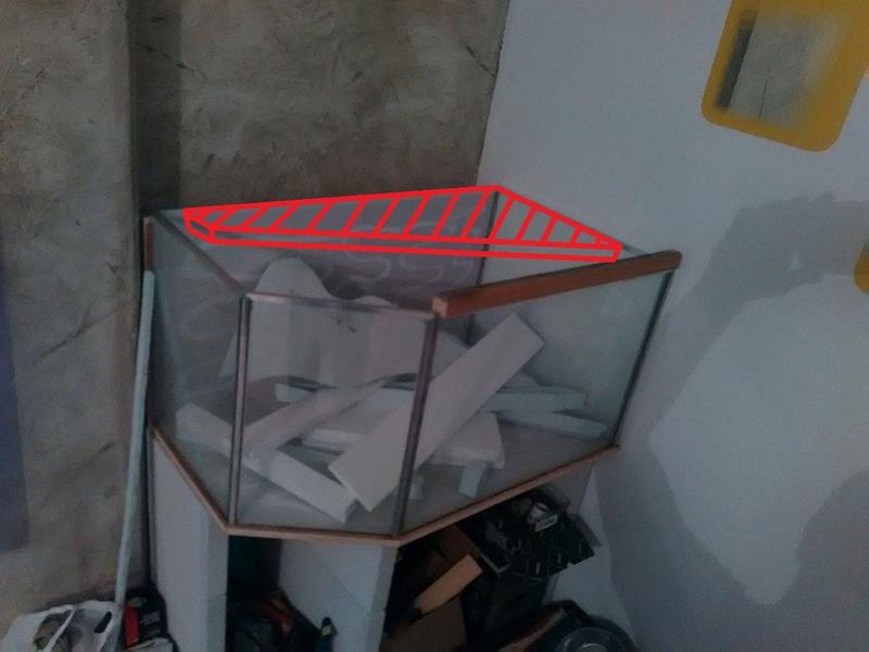 Nouveau projet aquarium australo/guinéen. 17121612