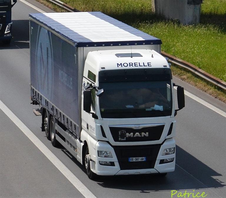 Morelle  (Haspres, 59) 17012