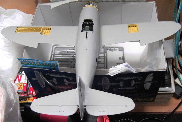 Republic P-47D Thunderbolt Bubbletop / Kinetic, 1:24 - Seite 2 Pict5886