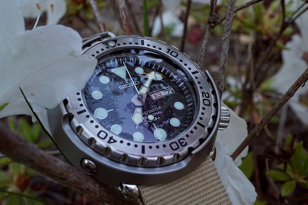 Votre montre du jour - Page 18 Rtdsc052