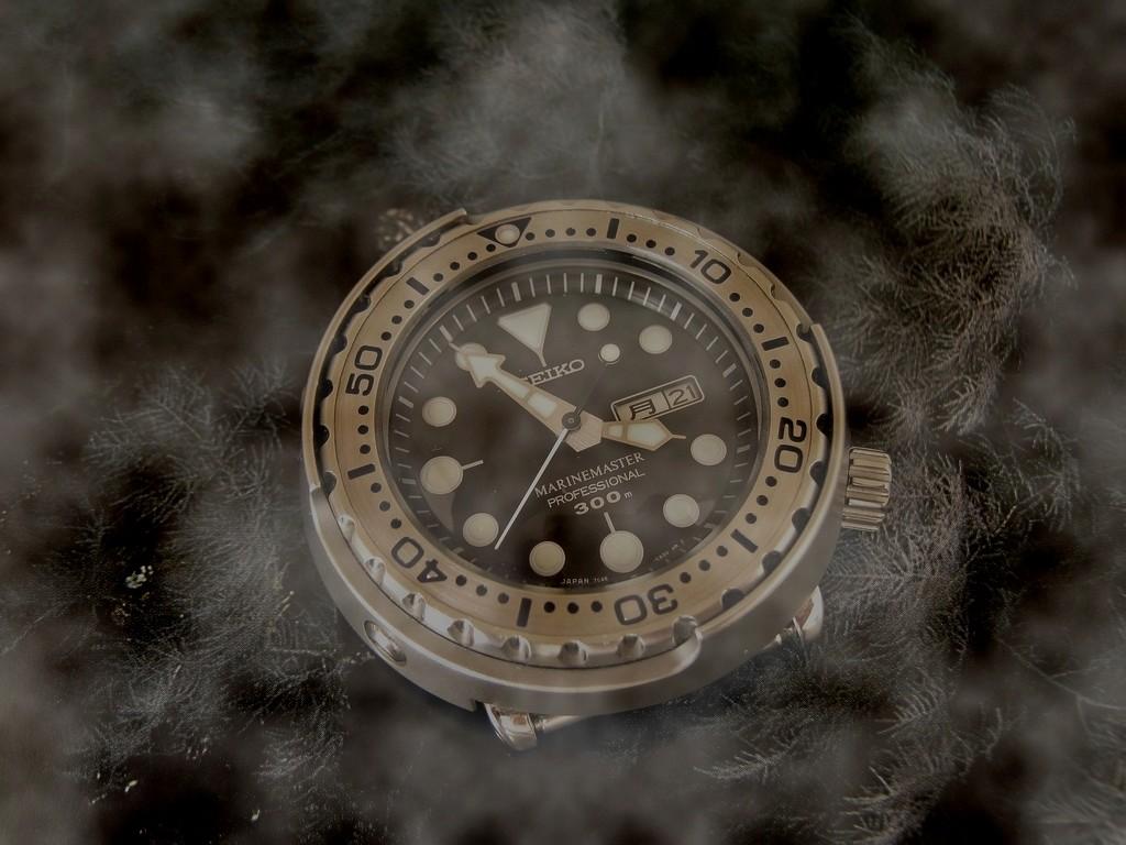 Votre montre du jour - Page 10 Rtimg_10