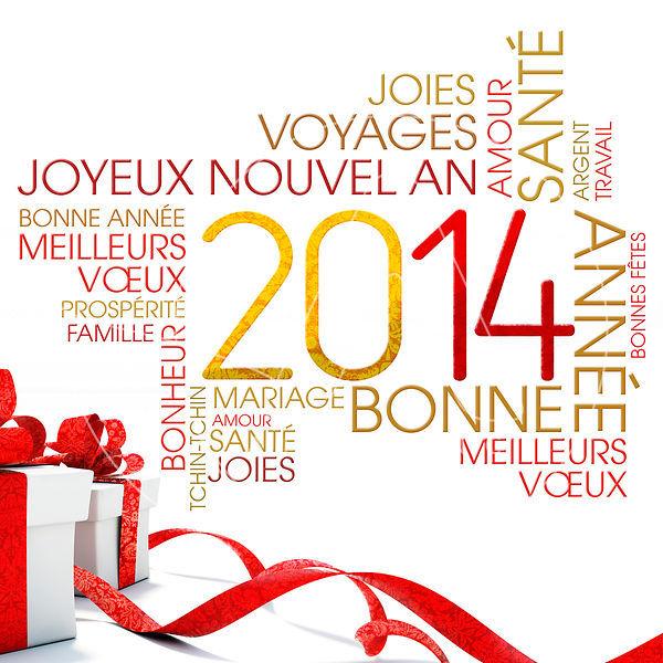 Meilleurs voeux 2014 2014-c10
