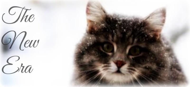 Winter Top Pic Vote :) Newera15