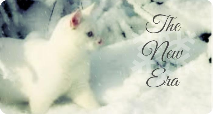 Winter Top Pic Vote :) Newera18