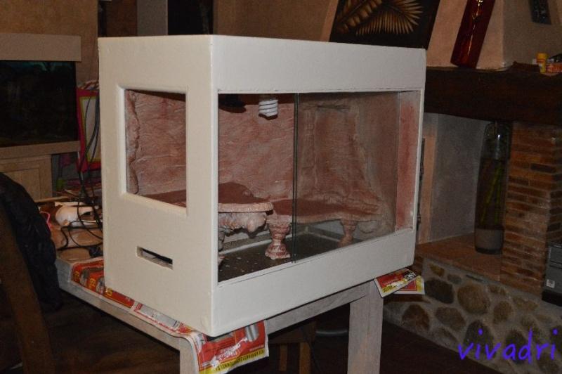 terrarium de vivadri (100% fait maison ;-D ) Dsc_9211