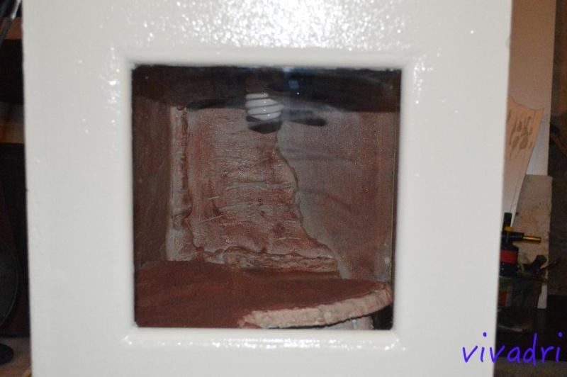 terrarium de vivadri (100% fait maison ;-D ) Dsc_9212