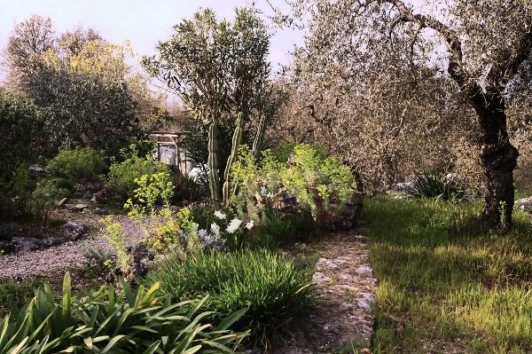 Analluba - Un petit tour du jardin au printemps Jardin15