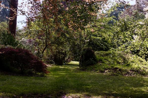 (Italie) Giardini di Ninfa Panora10
