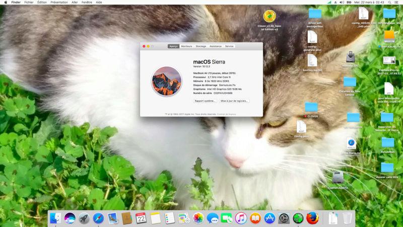 (Résolu)-mac os x sur Lenovo Yoga 500 i5 skylake Graphic Intel HD520 et nVidia 920M une mémoire samsung DDR3 8go - Page 4 Captur15