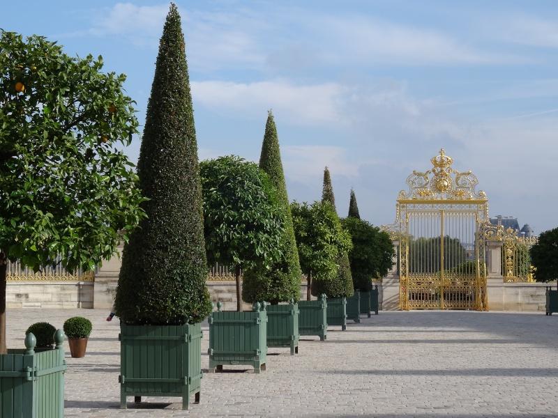 Exposition et Année André Le Nôtre à Versailles en 2013 Dsc01310