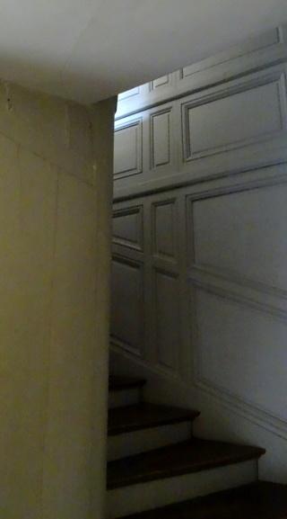 Demande photo escalier dauphin Servic12