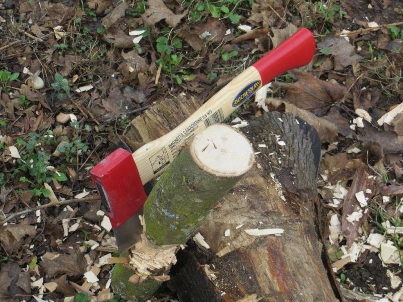 [Test] la hachette comme outil bushcraft Img_3414
