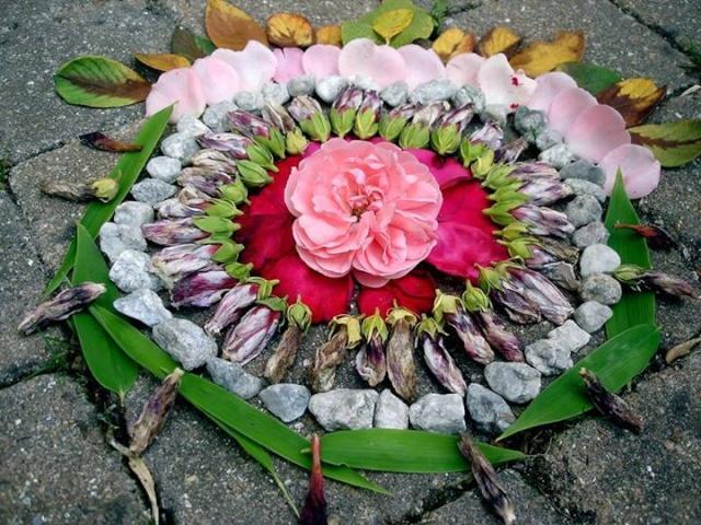 Tableaux, plantes et création - [résolu] 58030011
