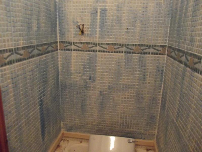 New Bathroom II Dscf2310
