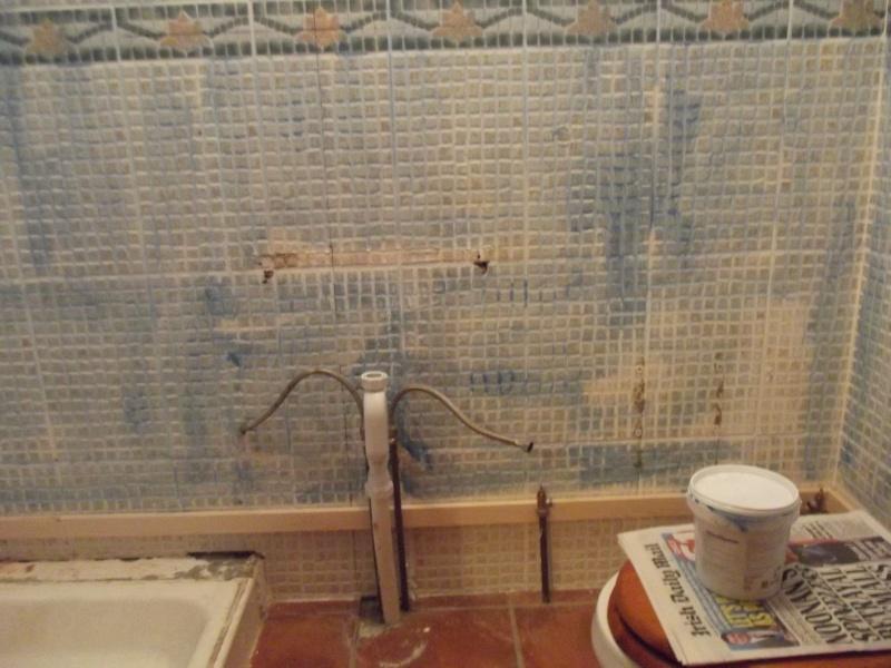 New Bathroom II Dscf2312