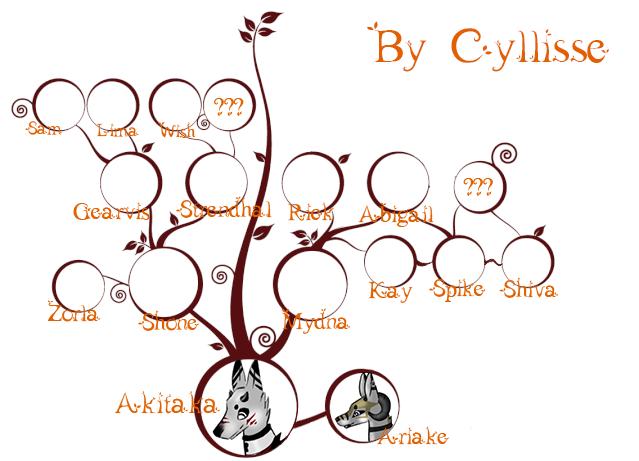 Arbre généalogique d'Akitaka Akitak13
