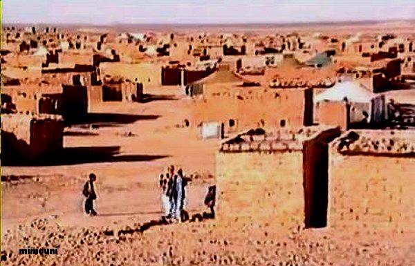 Visite perilleuse a Tindouf  زيارة محفوفة بالمخاطر الي تندوف Mimoun13