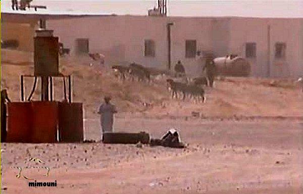 Visite perilleuse a Tindouf  زيارة محفوفة بالمخاطر الي تندوف Mimoun15