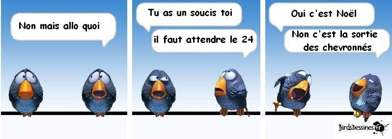 LES CHEVRONNES (Nouveau Magazine) Bird_f10