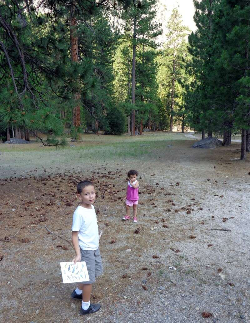 Notre inoubliable périple californien du 25 juin au 16 juillet 2013 (San Francisco, Yosemite, Los Angeles, Legoland, San Diego Zoo & SeaWorld et... DISNEYLAND!)  - Page 5 2815