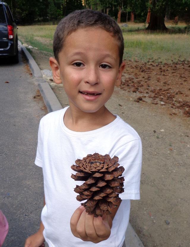 Notre inoubliable périple californien du 25 juin au 16 juillet 2013 (San Francisco, Yosemite, Los Angeles, Legoland, San Diego Zoo & SeaWorld et... DISNEYLAND!)  - Page 5 2915