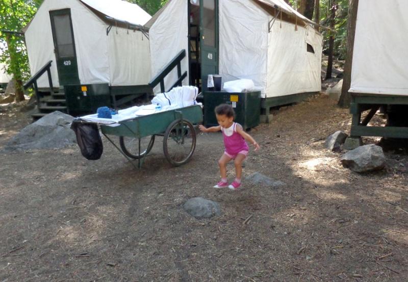 Notre inoubliable périple californien du 25 juin au 16 juillet 2013 (San Francisco, Yosemite, Los Angeles, Legoland, San Diego Zoo & SeaWorld et... DISNEYLAND!)  - Page 5 316