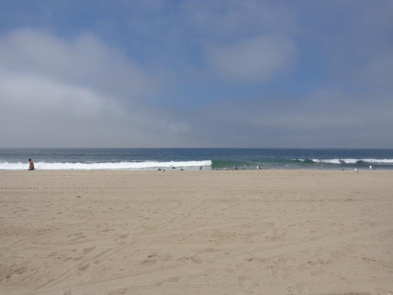 Notre inoubliable périple californien du 25 juin au 16 juillet 2013 (San Francisco, Yosemite, Los Angeles, Legoland, San Diego Zoo & SeaWorld et... DISNEYLAND!)  Dsc00210