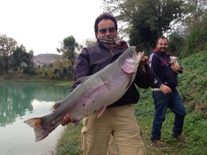 Trota Iridea 13 kg  14263510