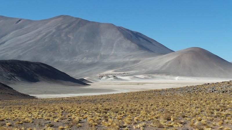 Le 16.03.2017 San Pedro d'Atacama.(par pat) 20170428