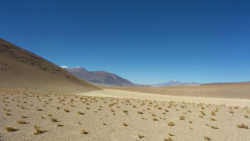 Le 16.03.2017 San Pedro d'Atacama.(par pat) 20170435