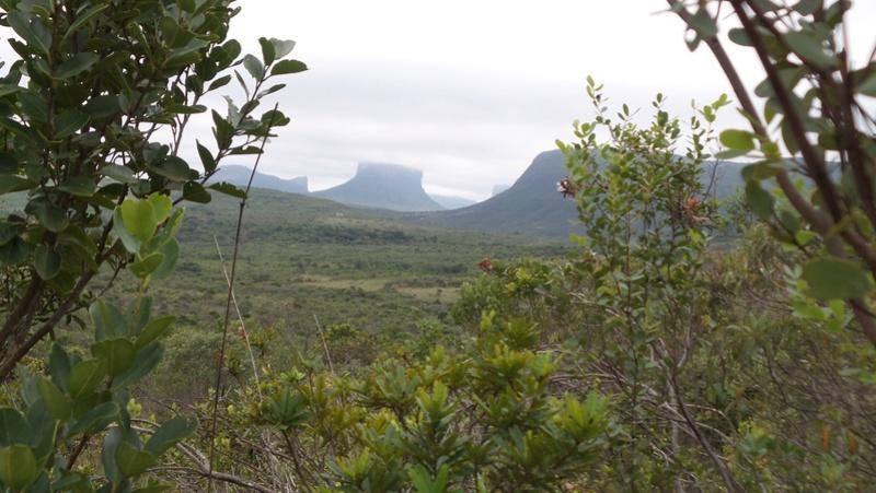 Le 29.05.2017 Le parc national Chapada Diamantina à Lençois.  20170692