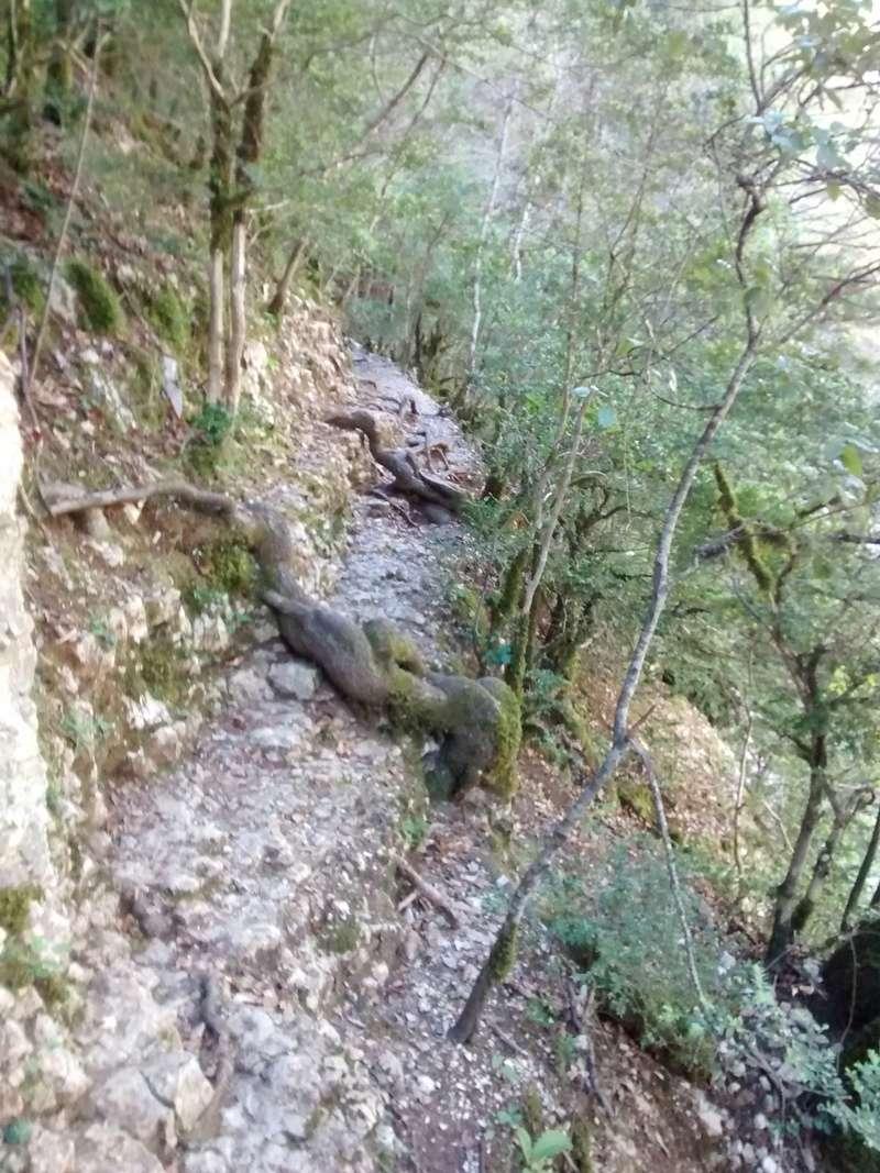 Rando et vape dans les gorges du Verdon Img_2021