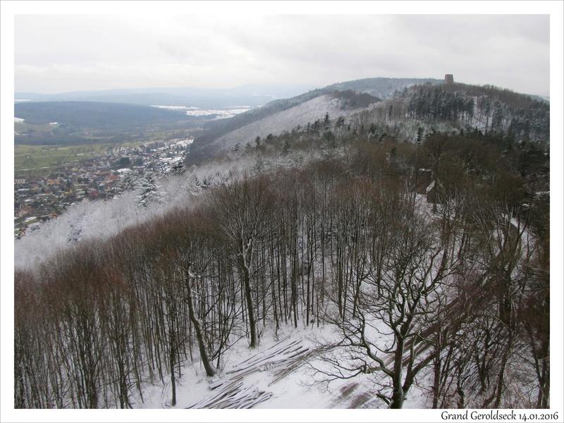 Ces derniers temps en Alsace/Moselle (67 & 57) 01/02.2017 Gerold10