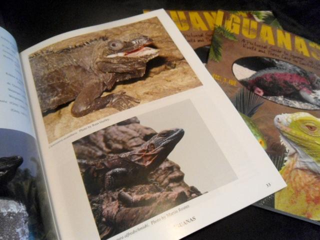 """Livre """"The Complete Carpet Python"""" et autres Sam_4722"""
