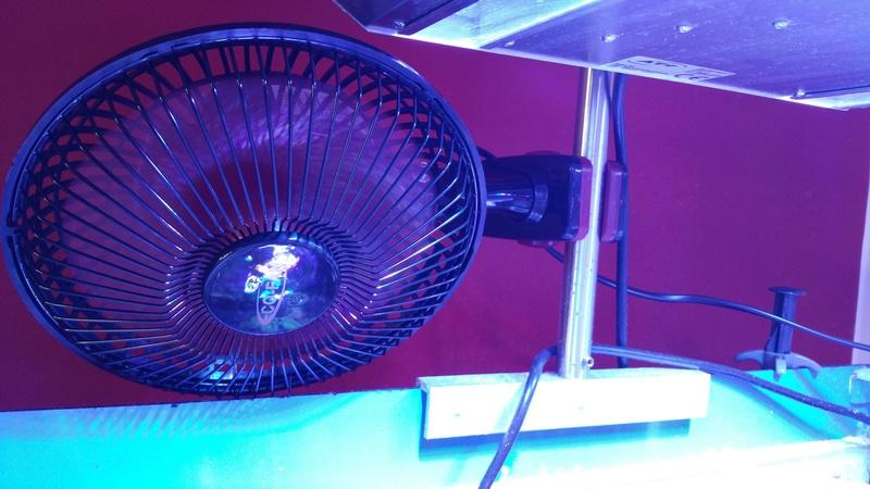 Ventilateur pour refroidir votre bac 20170424