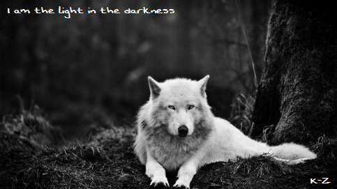 Vidéo Officielle de Legends Of Wolves Kazzed10