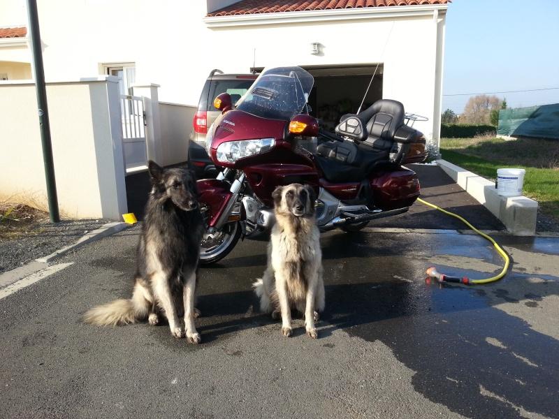 Bien laver sa moto 2013-110