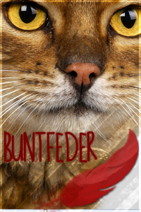Buntfeder