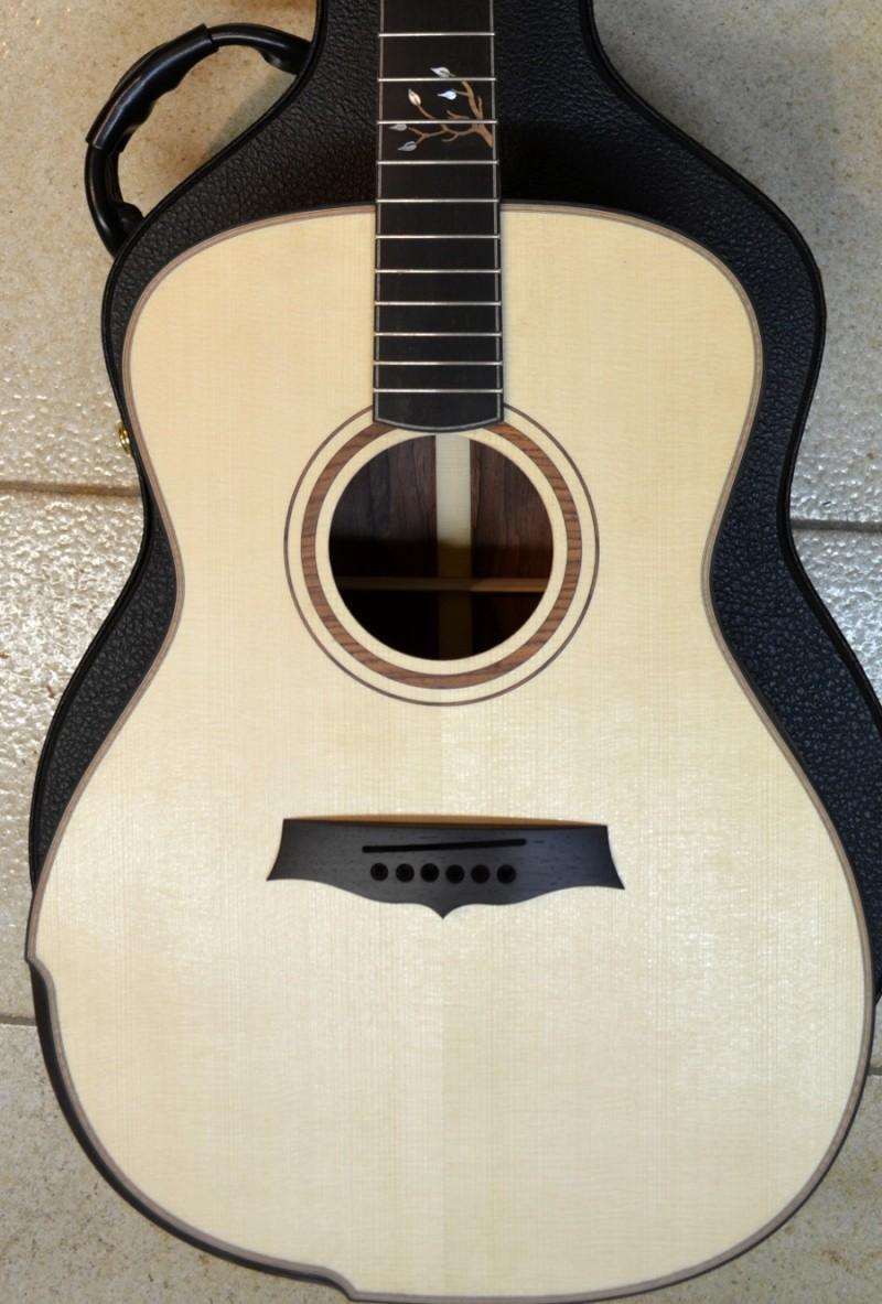 Ma nouvelle guitare : une Féjoz !!!!! - Page 4 T1310