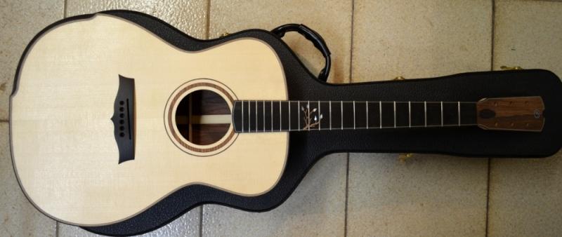 Ma nouvelle guitare : une Féjoz !!!!! - Page 4 T1510