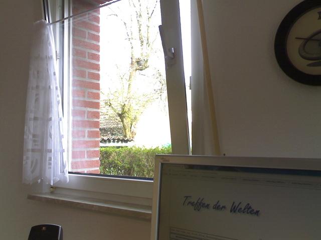 Gespräch mit Alter Baum in meiner neuen Wohnung 31032010